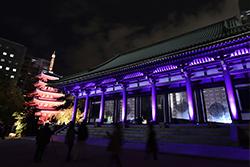 【千年煌夜】神社仏閣のライトアップを見ながらブラブラするのよくない?