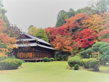 麻生大浦荘で期間限定の紅葉狩り♪