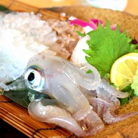 イカが高級魚の仲間入り?福岡のイカ情報【2019年】
