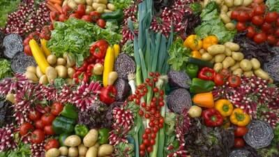 ダイエットに最適な野菜&フルーツはこれ!ハーバードに学ぶ♪